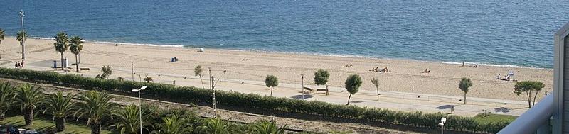 Diseño web en Pineda de mar